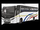 Tata CityBus Right small